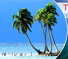 Goa Beach, Goa Tour Packages